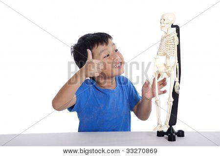 Class Of Human Anatomy