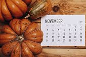 View From Above To Simple November 2019 Calendar Decorated With Pumpkin poster