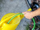 Gardener With A Green Garden Hose Is Pouring Water In Yellow Watering Bucket. Garden Yellow Water Ca poster