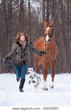 Girl With Dog And A Don Horse
