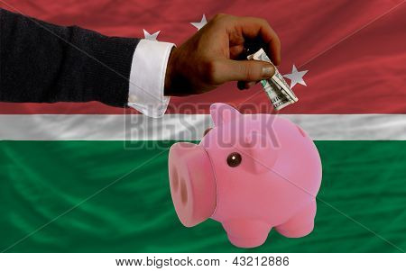 Dollar Into Piggy Rich Bank And  National Flag Of  Of Maghreb