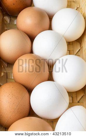 Eggs Varied
