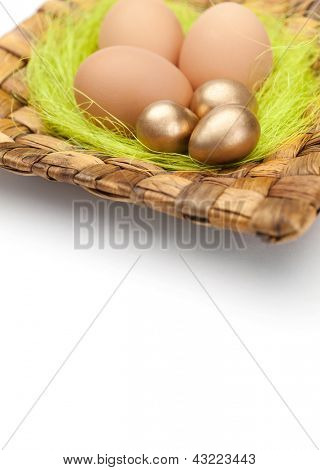 Brown and golden easter eggs are on square plate with sisal green fibre, isolated on white