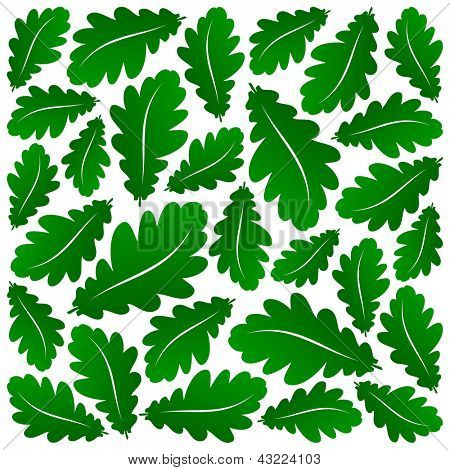 abstract green oak leaves background