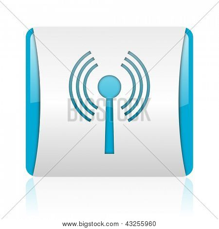 wifi blue and white square web glossy icon