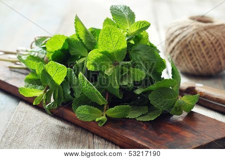 Green Mint Leaves