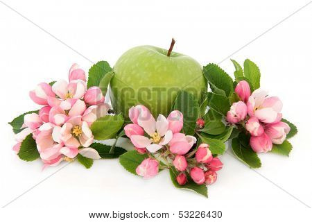 Granny smith green apple with flower blossom over white background.