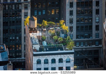 New York Rooftop - Roof Garden In Chelsea