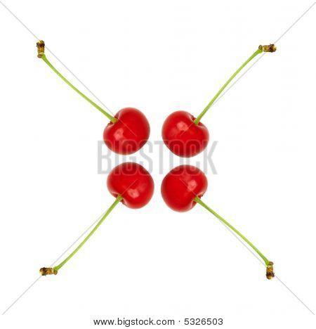 Sour Cherries Cross