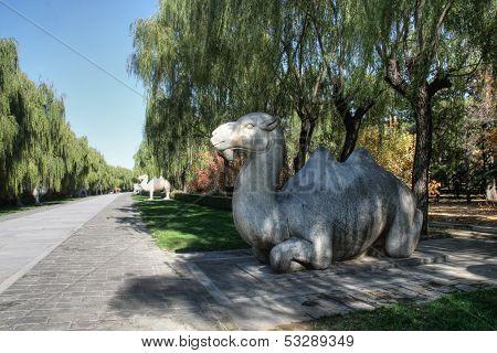 Camel statue