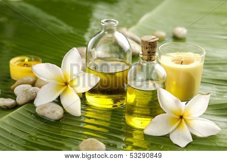 Two frangipani and stones with yellow candle ,massage oil on wet banana leaf