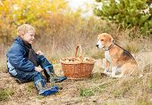 stock photo of edible mushroom  - Little boy with his pet sit on forest glade with basket full of mushrooms - JPG