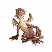 foto of dragon  - Baby dragon sitting on a white background - JPG
