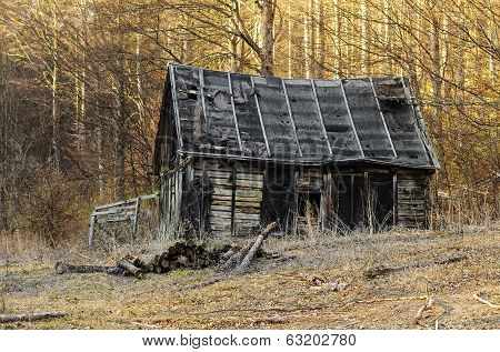 Cabin Abandoned In The Woods