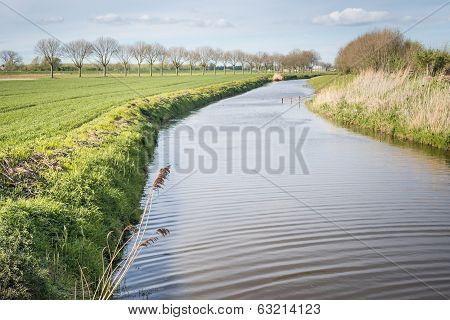 Meandering Stream In A Dutch Landscape