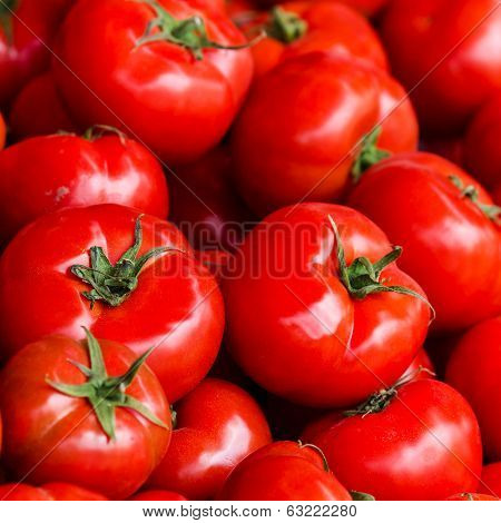 Group Of Fresh Tomatoes Background. Ripe Red Tomatoes On A Market Closeup.