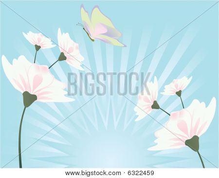 Flower And Butterfly Blue Background 1