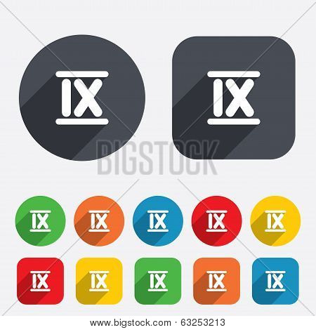 Roman numeral nine icon. Roman number nine sign.