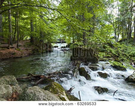 Small Beautiful Brook Stream Waterfall In A Forest
