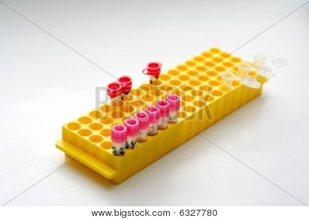 Yellow Holder Of Test Tubes For Biological Liquids And Blood
