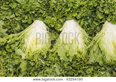 green leaf lettuce in a market