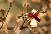 foto of figurines  - Photo shows a straw angel figurine in the wood - JPG