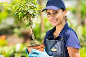 happy female nursery worker holding potted plant