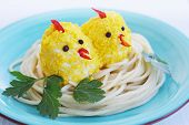 picture of baby chick  - Food for the baby - JPG