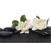 white gardenia flowers and black stones on mat
