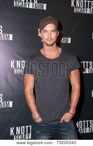 LOS ANGELES - OCT 3:  Drew Van Acker at the Knott's Scary Farm Celebrity VIP Opening  at Knott's Berry Farm on October 3, 2014 in Buena Park, CA