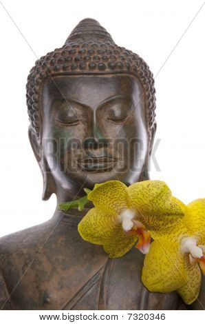 Serene Buddha With Orchids