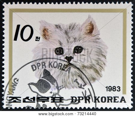 NORTH KOREA - CIRCA 1983: A Stamp printed in North Korea shows image of a Cat circa 1983