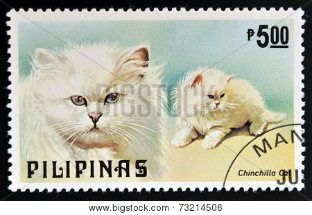 PHILIPPINES - CIRCA 1979: A stamp printed in Philippines shows Chinchilla cat circa 1979