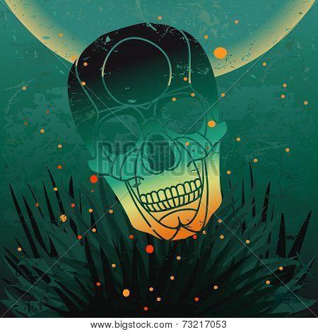 Vector halloween skull background.