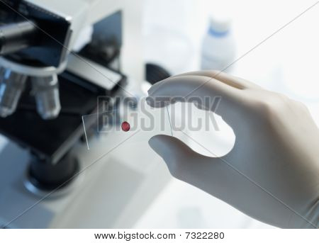 Scientist Holding Blood Sample Slide