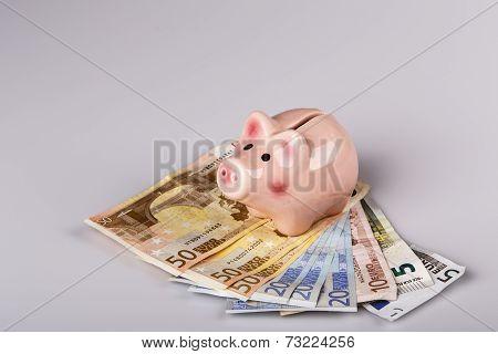 Pig Bank On Euro Banknotes