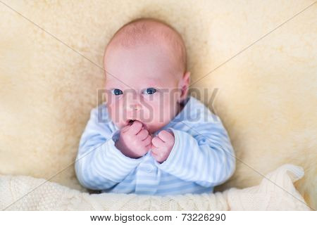 Cute Newborn Baby With His Hand In The Mouth Relaxing On Warm Sheepskin