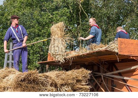 Farmers Loading Hay At A Traditional Hay-wagon During A Dutch Agricultural Festival