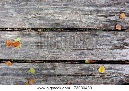 Grey Planks With Fall Leaves