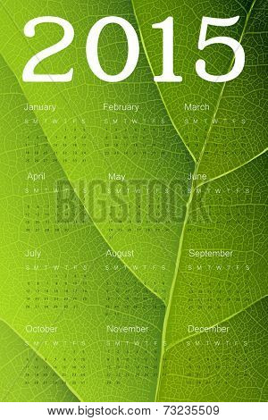 Calendar 2015 on green leaf texture. Vector