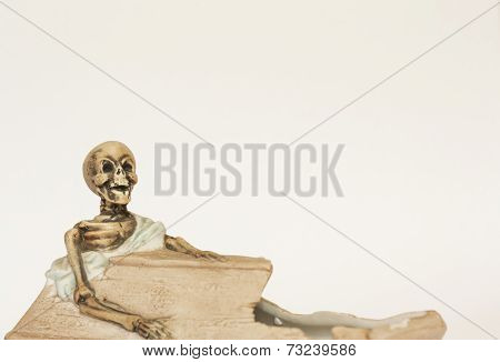 Skeleton figurine in coffin