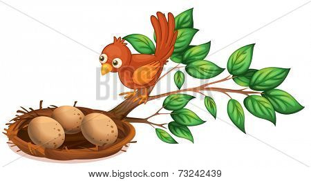 Illustration of a bird watching the eggs on a white background