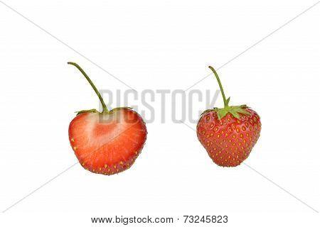 Two Freshly Picked Strawberries