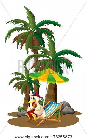 Illustration of a duck reading near the palm trees on a white background