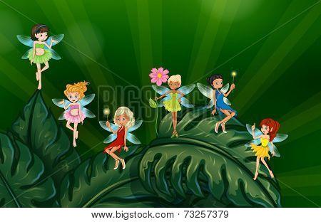 Illustration of many fairies on leaves