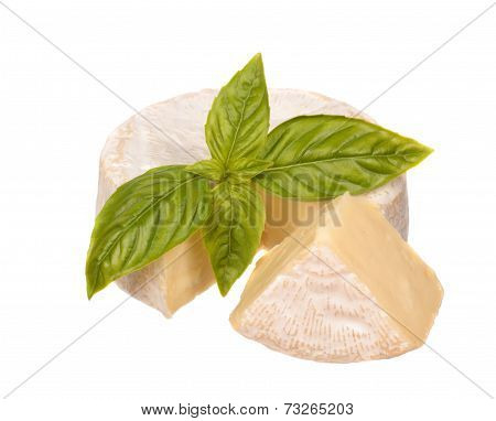 Brie Cheese With A Basil