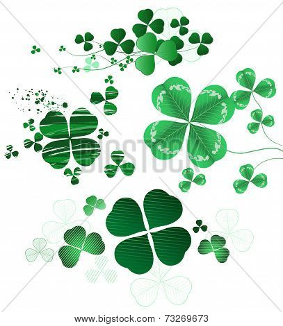 Four-leaf Clover On A White Background.