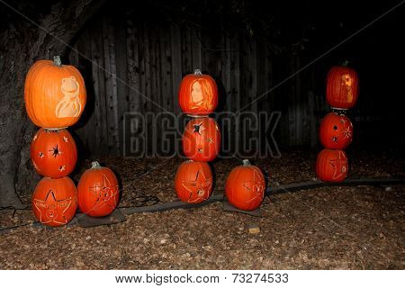 LOS ANGELES - OCT 4:  Kermit the Frog, Jennifer Lopez, and Usher Carved Pumpkins at the RISE of the Jack O'Lanterns at Descanso Gardens on October 4, 2014 in La Canada Flintridge, CA