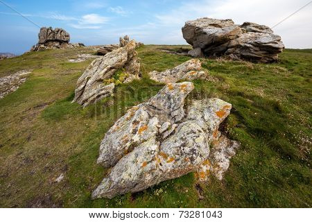Rocky coastline and meadow in Ushant island, Brittany, France