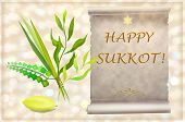 image of sukkot  - palm - JPG